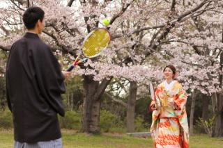 202970_神奈川_ロケーション撮影 【桜・紅葉】