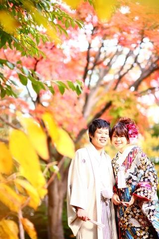 202963_神奈川_ロケーション撮影 【桜・紅葉】