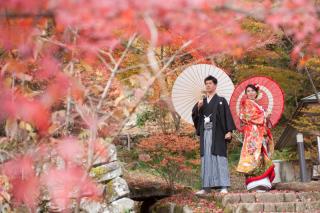 202899_神奈川_ロケーション撮影 【桜・紅葉】