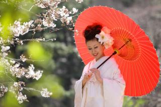 202928_神奈川_ロケーション撮影 【桜・紅葉】
