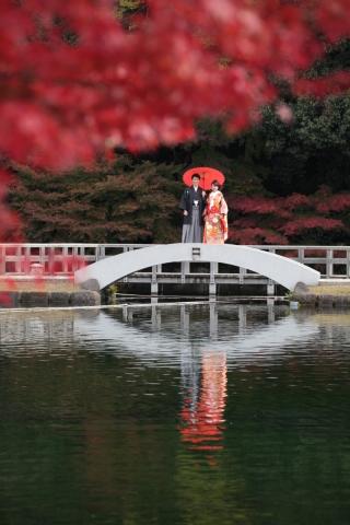 202915_神奈川_ロケーション撮影 【桜・紅葉】