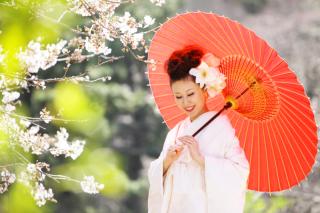 279271_東京_【和&洋】桜・紅葉