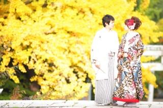 202965_神奈川_ロケーション撮影 【桜・紅葉】
