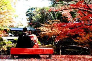 202907_神奈川_ロケーション撮影 【桜・紅葉】