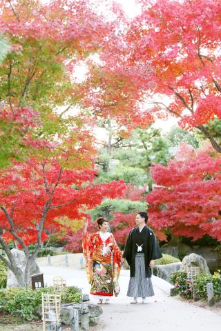 279294_神奈川_【和&洋】桜・紅葉