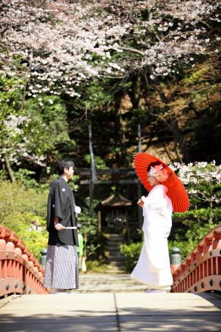 279298_神奈川_【和&洋】桜・紅葉
