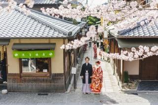 146479_京都_桜・紅葉