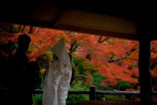 256974_京都_紅葉
