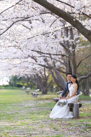 312864_東京_【2021年】桜ロケーション
