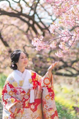 312840_静岡_【2021年】桜ロケーション
