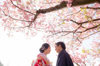 312839_静岡_【2021年】桜ロケーション