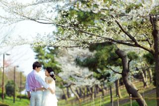 312859_東京_【2021年】桜ロケーション