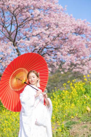 313111_静岡_【2021年】桜ロケーション