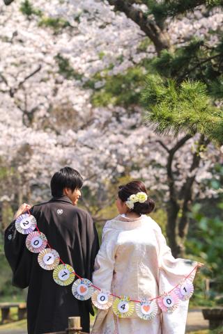 313117_神奈川_【2021年】桜ロケーション