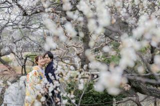 313102_神奈川_【2021年】桜ロケーション
