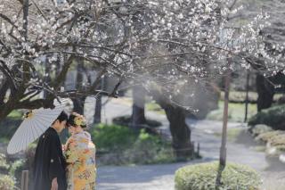 313119_神奈川_【2021年】桜ロケーション
