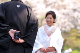 313118_神奈川_【2021年】桜ロケーション