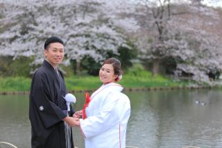 313123_神奈川_【2021年】桜ロケーション