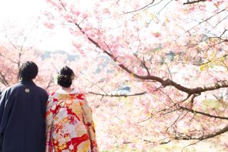 313126_静岡_【2021年】桜ロケーション