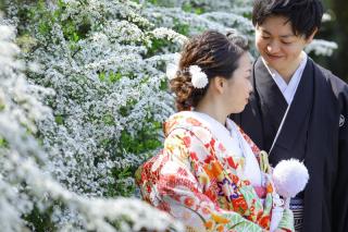 313106_神奈川_【2021年】桜ロケーション