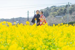 313127_静岡_【2021年】桜ロケーション