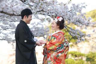 313113_神奈川_【2021年】桜ロケーション
