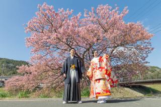 313124_静岡_【2021年】桜ロケーション