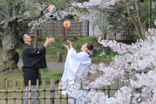313121_神奈川_【2021年】桜ロケーション