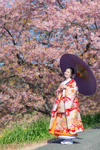 313130_静岡_【2021年】桜ロケーション