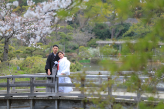313122_神奈川_【2021年】桜ロケーション