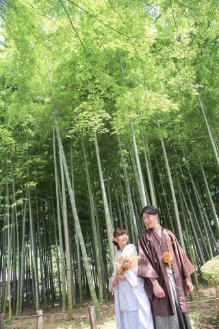 331300_東京_【2021年】新緑・海ロケーション&桜ロケーション