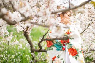 331287_東京_【2021年】新緑・海ロケーション&桜ロケーション