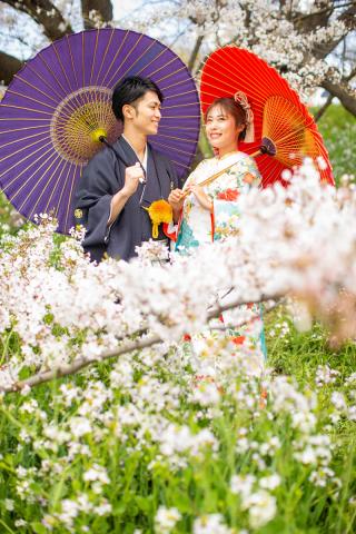 331289_東京_【2021年】新緑・海ロケーション&桜ロケーション