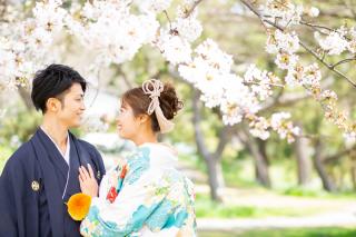 331286_東京_【2021年】新緑・海ロケーション&桜ロケーション