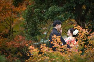 391436_千葉_秋 ~autumn~