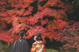 393516_千葉_秋 ~autumn~