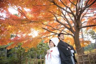107024_千葉_秋 ~autumn~