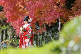 182471_千葉_秋 ~autumn~
