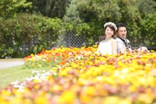 107020_千葉_春 ~spring~