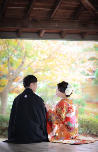 393996_千葉_秋 ~autumn~