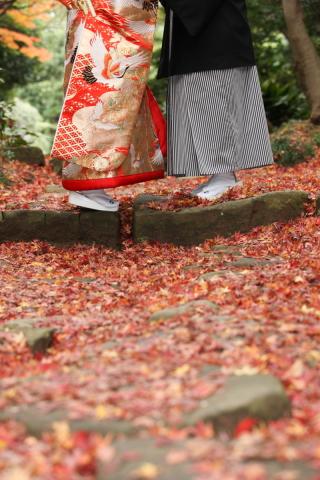 107026_千葉_秋 ~autumn~