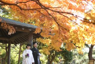 182338_千葉_秋 ~autumn~