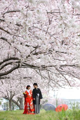 19926_千葉_春 ~spring~