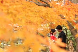 107032_千葉_秋 ~autumn~