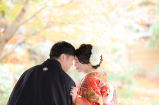 393997_千葉_秋 ~autumn~