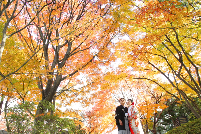 Wedding Story 松戸店_トップ画像1