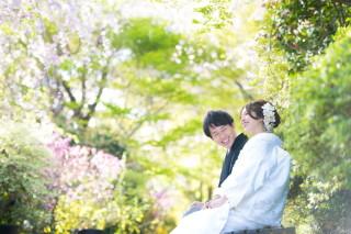 62877_京都_京都のロケーション・衣装白無垢女性
