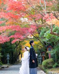 120263_京都_京都のロケーションで撮影・その2
