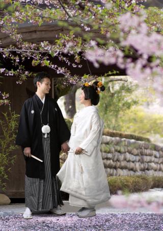 296658_愛知_婚礼和装(白打掛)
