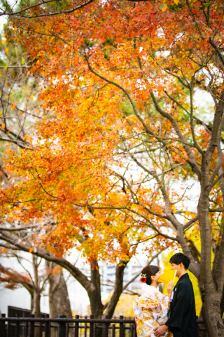 399851_福岡_秋&冬